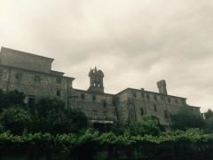 Intervención en las cubiertas del convento del Carmen
